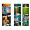 Lomography - FotoClips