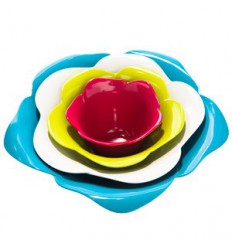 Zak! Design - Rose Bowls in a Gift Box