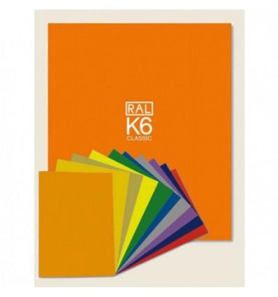 RAL K6 Ring binder € 457,50 Miglior Prezzo