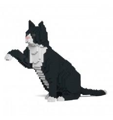 JEKCA TUXEDO CAT