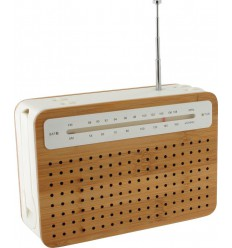 LEXON - SAFE RADIO