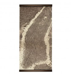 MAPPA NEW YORK 1879
