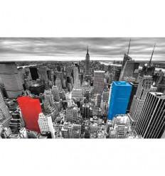 Neutra - Stampa New York Rainbow € 55,50 Miglior Prezzo