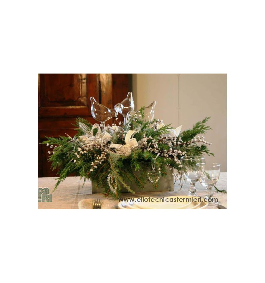 Fiorira 39 un giardino set abbeveratoio per piante - Piante per giardino ...